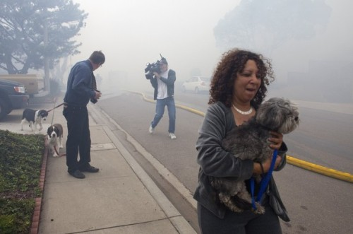 Residents cough while fleeing with their pets from the scene of a military jet that crashed into homes in the University City neighborhood of San Diego, California December 8, 2008. REUTERS